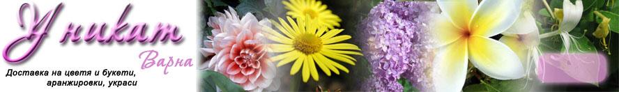 Информация за цветята