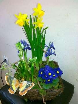 Комбинация пролетни цветя