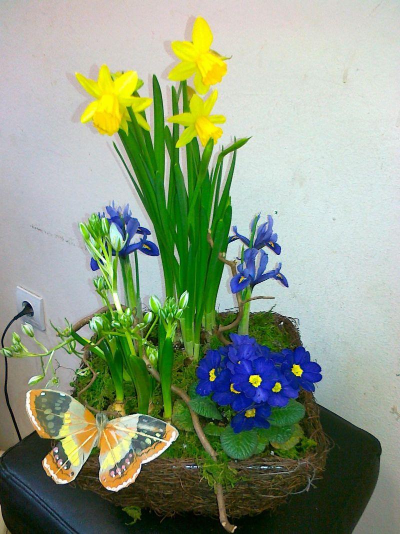 Кошница пролетни саксийни цветя