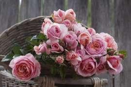 Букет от спрей рози 15 броя